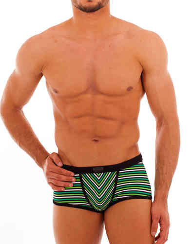 Swimwear Stripes Action Pant black-green
